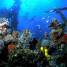 В  Крыму на дне моря обнаружен античный корабль