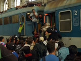 Хорватия перекрыла дороги на границе с Сербией из-за беженцев