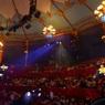 Артист цирка Запашного сорвался с высоты во время выступления