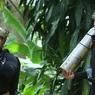 Специалисты Илона Маска пытаются спасти детей из тайской пещеры