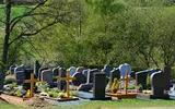 В Башкирии объявили вознаграждение за информации об украденном из могилы теле мужчины