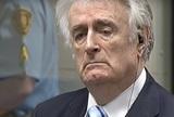 Радован Караджич приговорён к пожизненному заключению