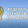 СМИ: Илья Шестаков может возглавить Росрыболовство