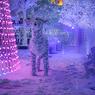 Католическое Рождество в Украине стало выходным днём