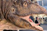 Американский климат тираннозавра сделал карманным  (ФОТО, ВИДЕО)