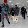 В аэропорту задержали астраханского исламиста из Турции