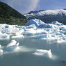 Озеро на Аляске «почирикало» с туристами (ВИДЕО)