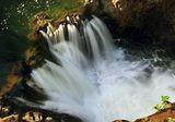 В лесах Амазони обнаружен рог изобилия - река супа (ФОТО)