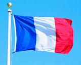 Франция: Пока нет данных, что малолетний палач ИГ учился в Тулузе