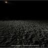 На озере Ильмень найдены мертвыми два рыбака