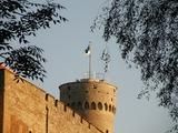 В Эстонии офицера Сил обороны и его отца арестовали за шпионаж в пользу России