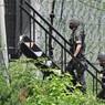 Южная Корея прокомментировала взрыв КНДР офиса связи