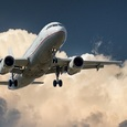 Летевший в Сочи самолет из-за птицы совершил вынужденную посадку в Саратове