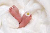 Младенцев в России с января начнут фотографировать по ГОСТу