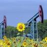 Отменена сделка по продаже 14% акций Роснефти китайской компании CEFC