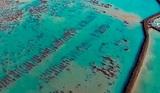 Ученые заявили об обнаружении потерянной Атлантиды