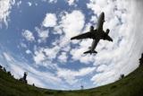 Россия полностью остановила авиаперелеты с другими странами, прекратив даже вывозные рейсы