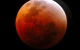 """Сотни НЛО кружили над Землей в ночь """"кровавой луны"""" – сообщили уфологи"""