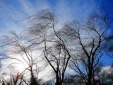 Очевидцы показали первые кадры разрушительного шторма в Сочи