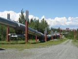 В Ленобласти возбуждено дело о мошенничестве при строительстве газопровода