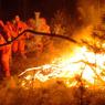 Площадь лесных пожаров в Сибири выросла вчетверо за сутки