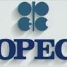 ОПЕК подняла ежесуточную квоту на добычу нефти до 31,5 млн баррелей
