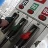 Самарские автоледи пришли в бикини за бесплатным бензином