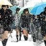 Сильный снегопад отменил в Японии сотни авиарейсов