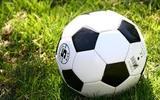 Назван самый популярный российский футбольный клуб