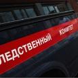 СК опубликовал видео массовой драки в Москве