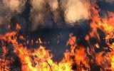По сообщению о пожаре в Сколково выехали пожарники и спасатели