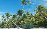 Россия и Сейшелы ввели безвизовый режим