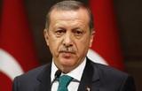 """Эрдоган назвал """"исторической ошибкой"""" ставку на Хафтара"""