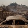 Более 30 человек погибли в результате лесных пожаров в Калифорнии