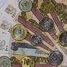 В Госдуму внесли новый проект об индексации пенсий работающим пенсионерам - три уже отклонили