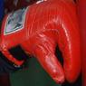 Стало понятно, зачем боксеру Рою Джонсу российский паспорт