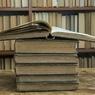 Писатель получил за новации в литературной форме денежный приз