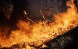 Минобороны привлекает 26 тысяч военнослужащих для тушения пожаров
