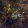 Маленькая лиса лепит огромные звезды