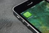 В Госдуме заявили, что новые правила WhatsApp противоречат российскому законодательству