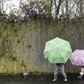 Климатологи обещают невероятную жару на 2014 год (ФОТО)