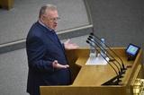 Болельщика арестовали на 14 суток за облитого пивом Жириновского