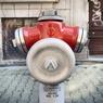 Городские улицы стали полотном для художника (ФОТО)