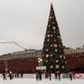 На Соборной площади Кремля установили главную елку страны