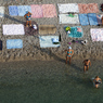 В Геленджике появится искусственный пляж