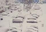 Гидрометцентр сообщил, где в России выпадет снег уже на этой неделе