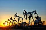 Российские компании приготовились сжигать нефть за ненужностью