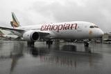Потерпел крушение самолёт летевший из Эфиопии
