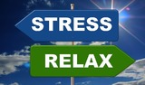 Необычный способ борьбы со стрессом набирает популярность в соцсетях