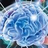 Ученые разработали протез для головного мозга